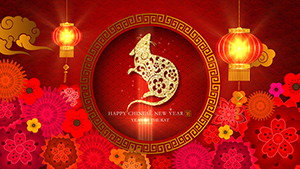 Year of the Rat - Chinese New Year