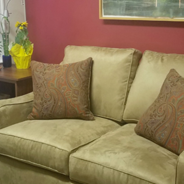 Earth color provides grounding energy in this doctor's waiting area Feng Shui'd by Linda Ellson.